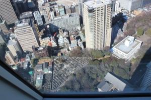 青松寺墓地(2011年1月31日撮影)