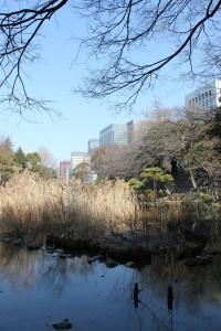 日比谷公園心字池(2011年2月23日撮影)