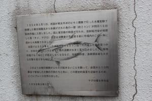 東京・築地市場の「マグロ塚」(2011年1月15日撮影)