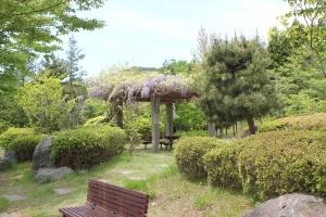 湯の岳PAで咲く藤