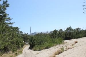 東海村の松林と原研施設(2011年4月24日撮影)