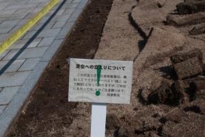 除染作業中の芝生