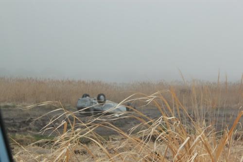 小高に残された津波跡(2012年4月25日撮影)