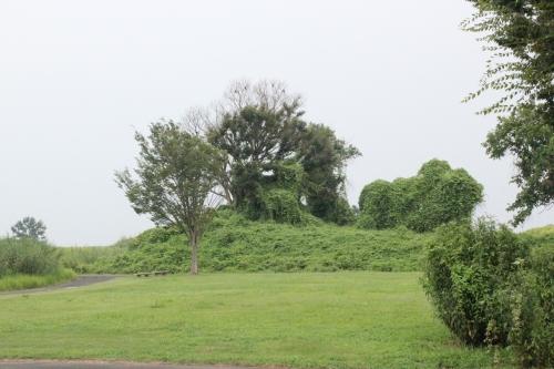 旧谷中村の「水塚」(2013年8月11日撮影)