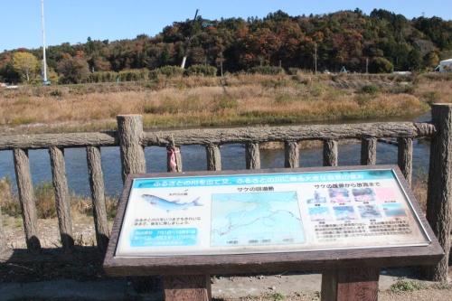 木戸川河畔のプレート(2013年11月23日)