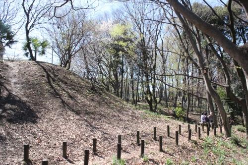 清水山憩いの森の雑木林(2014年3月31日撮影)