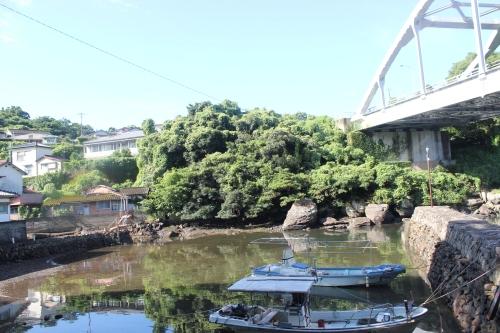 水俣市坪段の中堤防