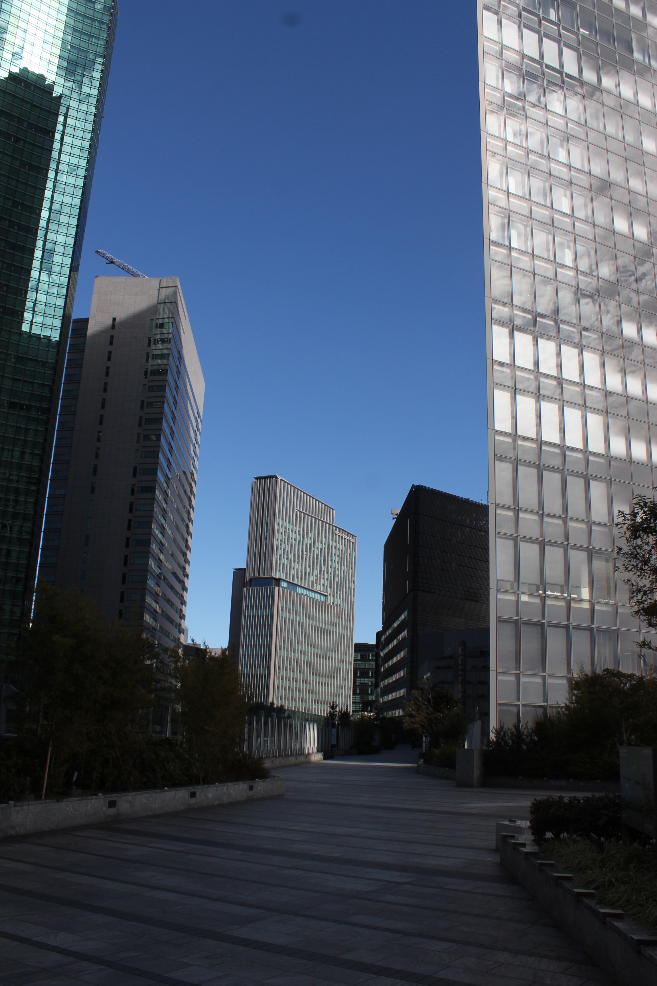 築地周辺の超高層ビル街